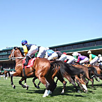 Keeneland Horse Racing Track Tours