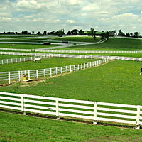 Kentucky Horse Park Tours